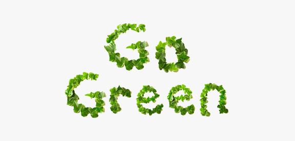 Eco Friendly Tips