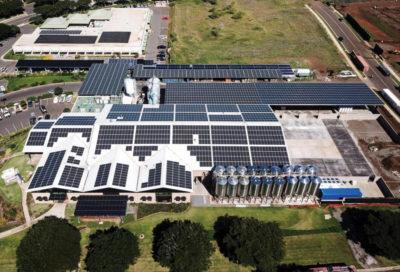 Maui Brewery Solar