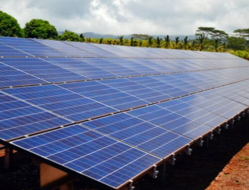 Clean Energy Goals Leap Forward with Island Solar Projects