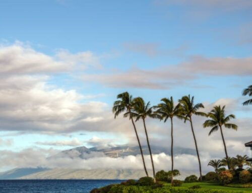 Maui Vacation Rental Occupancy Dismal in November